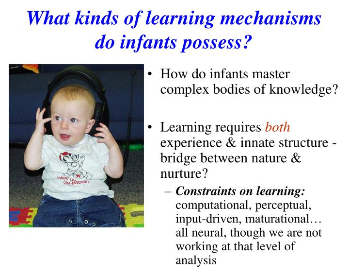 What kinds of learning mechanisms do infants possess