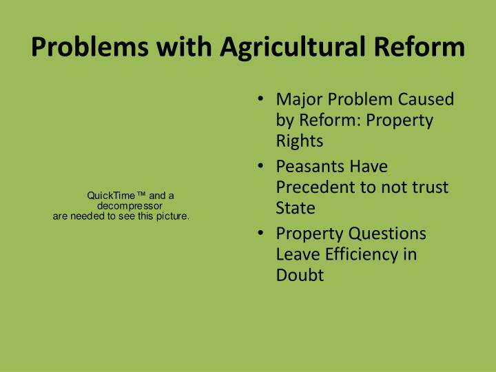 Problems with Agricultural Reform