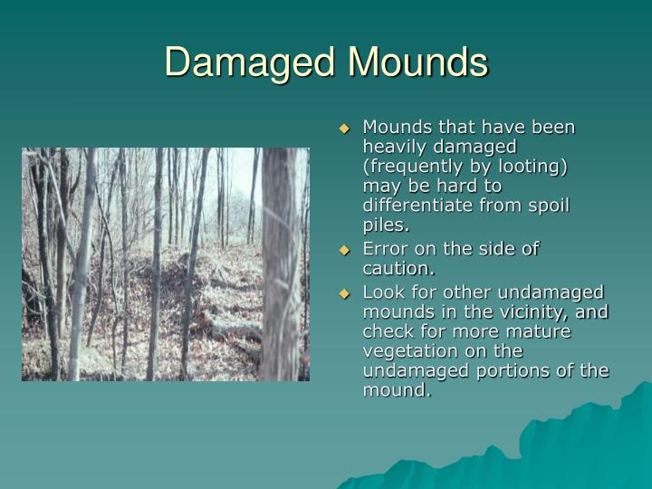 Damaged Mounds