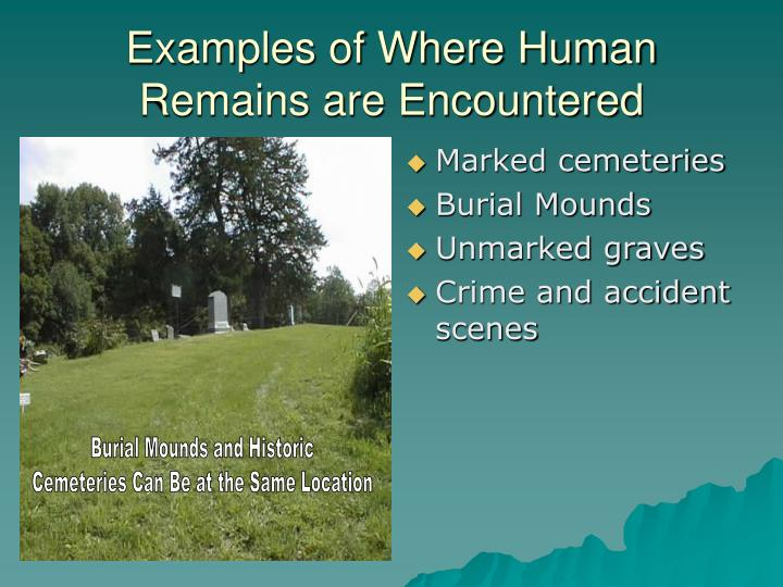 Examples of Where Human Remains are Encountered