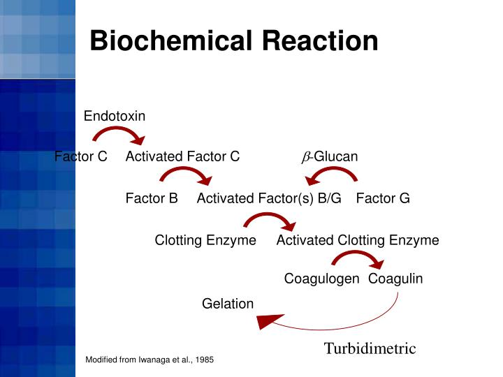 Biochemical Reaction