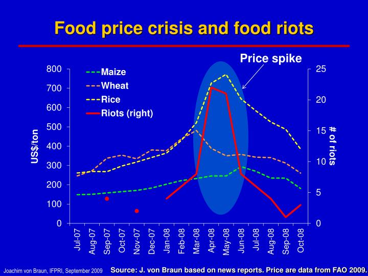 Food price crisis and food riots