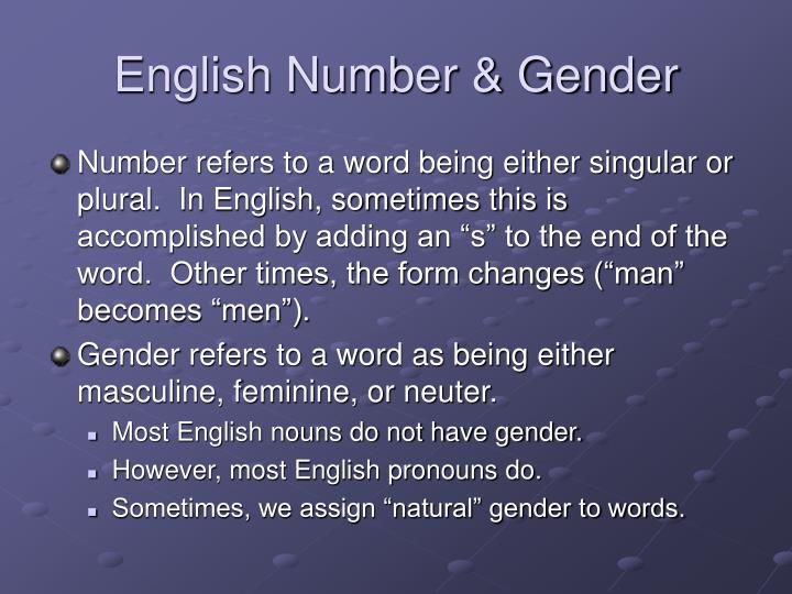English Number & Gender