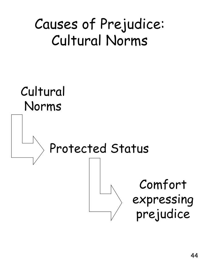 Causes of Prejudice: