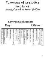 taxonomy of prejudice measures maass castelli arcuri 2000