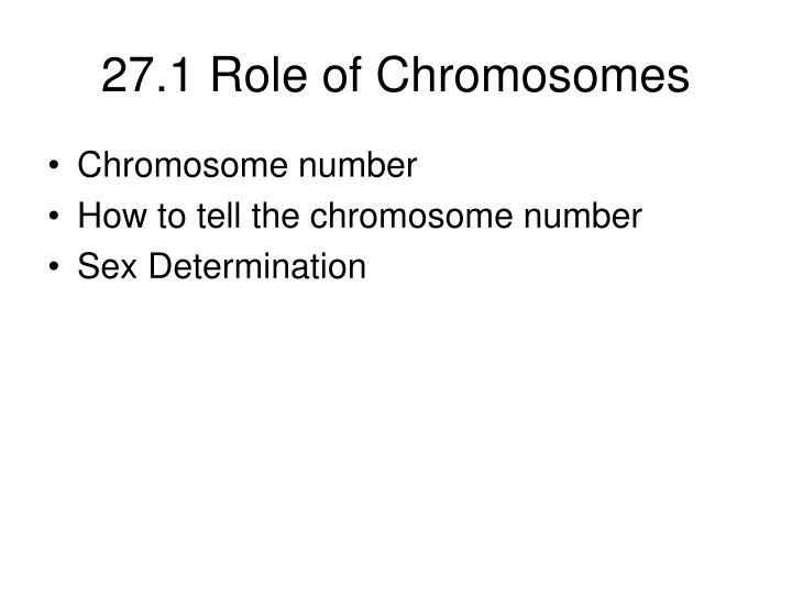 27.1 Role of Chromosomes