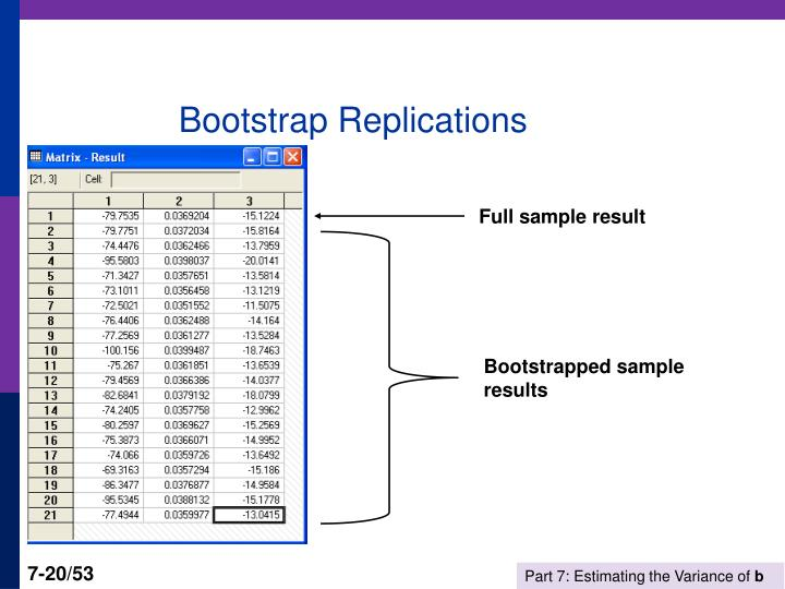 Bootstrap Replications