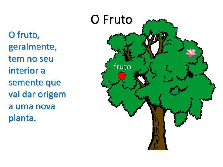 O Fruto