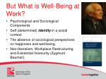 but what is well being at work2