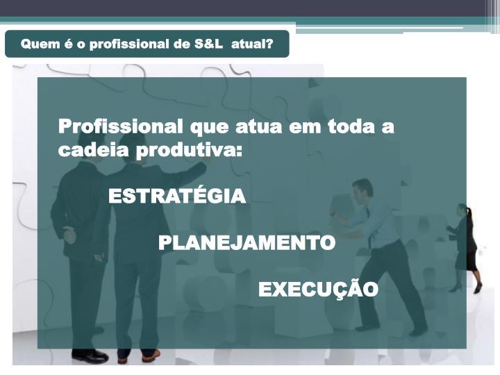Quem é o profissional de S&L  atual?