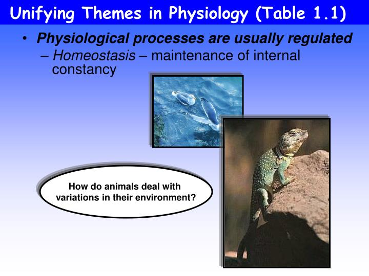 Unifying Themes in Physiology (Table 1.1)