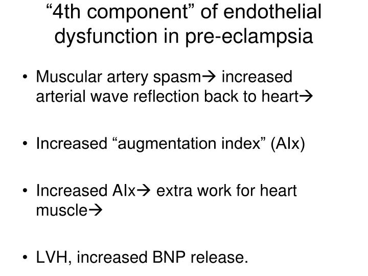 """4th component"" of endothelial dysfunction in pre-eclampsia"