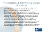 ip regulatory commercialization guidance