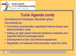 tunis agenda contd2