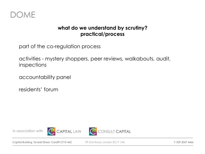 what do we understand by scrutiny?