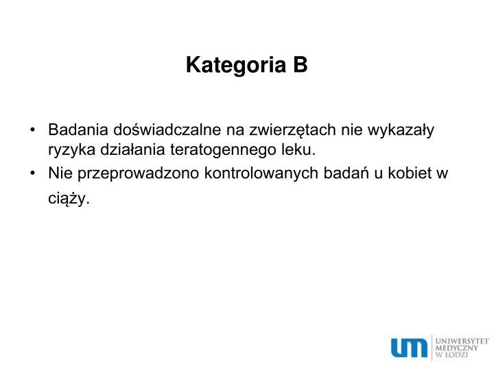Kategoria B