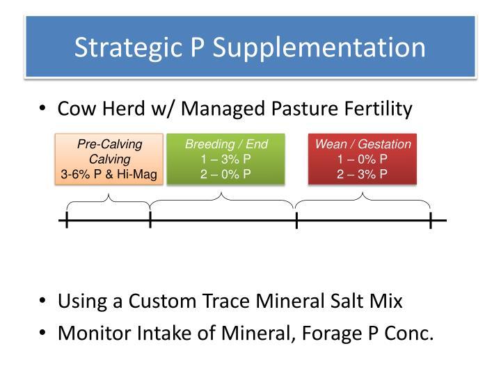 Strategic P Supplementation