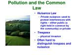 pollution and the common law