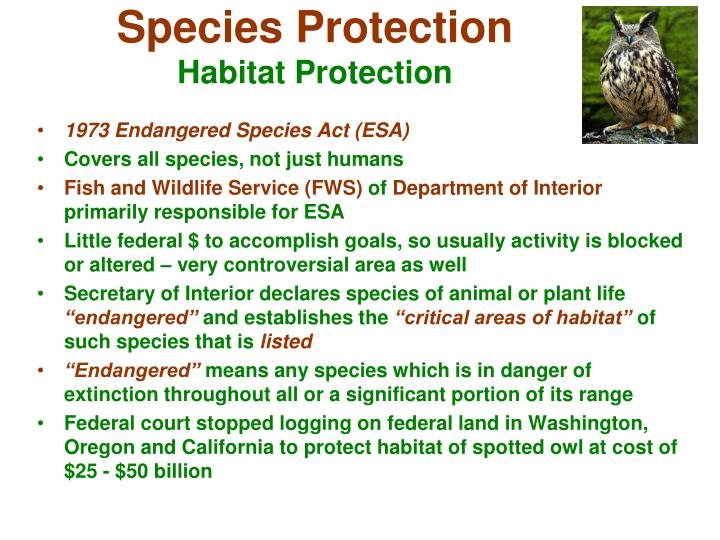 Species Protection