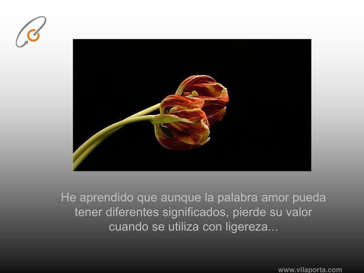 He aprendido que aunque la palabra amor pueda tener diferentes significados, pierde su valor cuando se utiliza con ligereza...