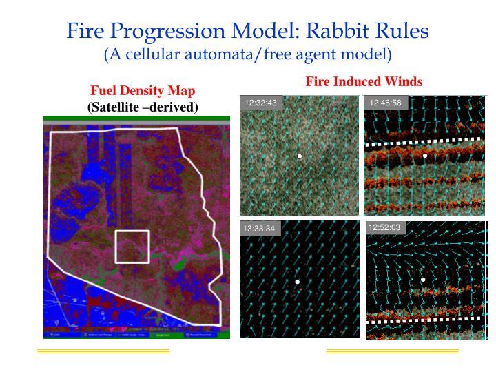 Fire Progression Model: Rabbit Rules