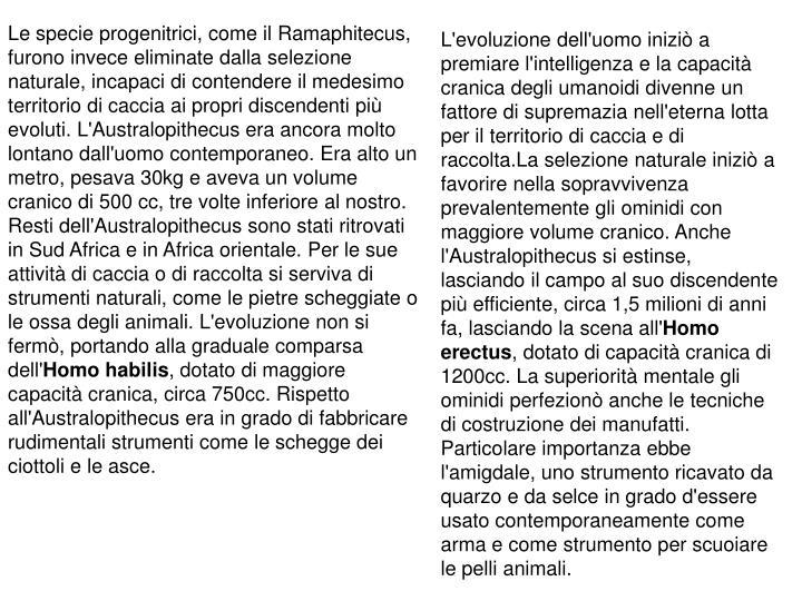 Le specie progenitrici, come il Ramaphitecus, furono invece eliminate dalla selezione naturale, incapaci di contendere il medesimo territorio di caccia ai propri discendenti più evoluti. L'Australopithecus era ancora molto lontano dall'uomo contemporaneo. Era alto un metro, pesava 30kg e aveva un volume cranico di 500 cc, tre volte inferiore al nostro. Resti dell'Australopithecus sono stati ritrovati in Sud Africa e in Africa orientale. Per le sue attività di caccia o di raccolta si serviva di strumenti naturali, come le pietre scheggiate o le ossa degli animali. L'evoluzione non si fermò, portando alla graduale comparsa dell'