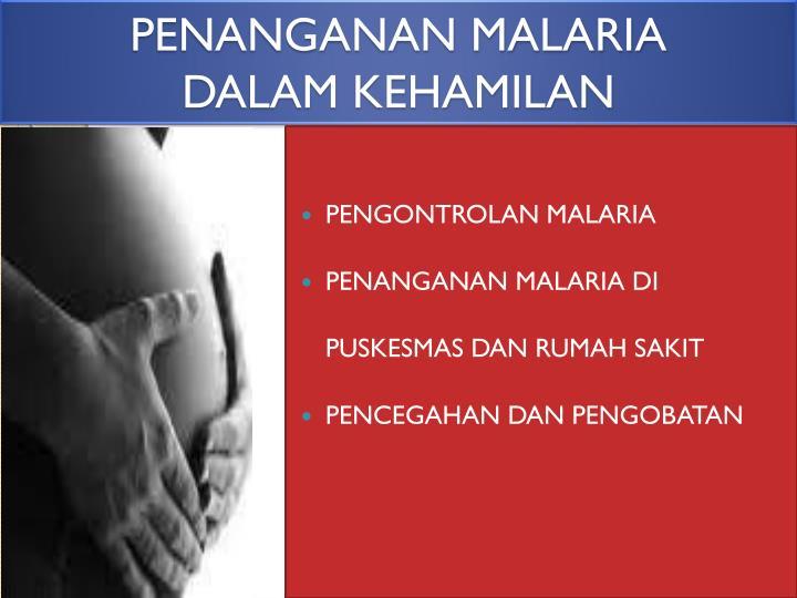 PENANGANAN MALARIA