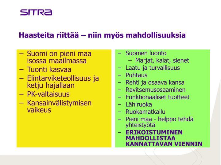 Suomi on pieni maa isossa maailmassa