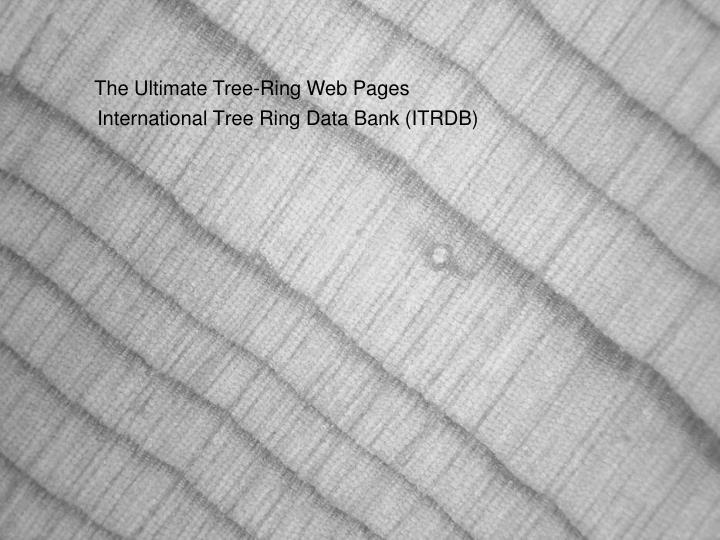 International Tree Ring Data Bank (ITRDB)