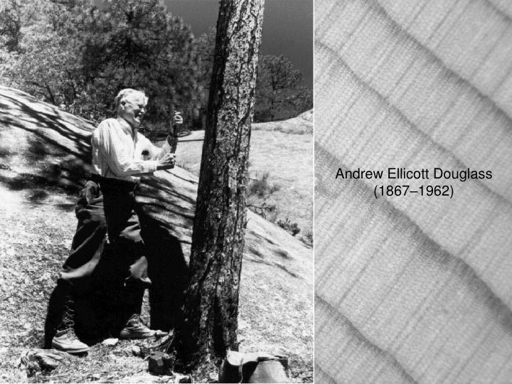 Andrew Ellicott Douglass  (1867–1962)