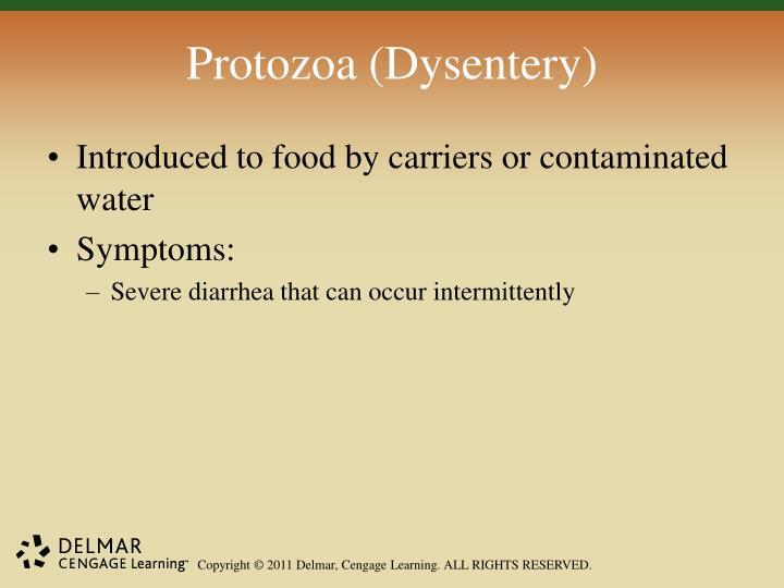 Protozoa (Dysentery)