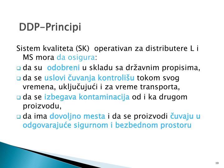 DDP-Principi
