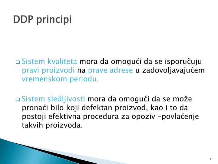 DDP principi