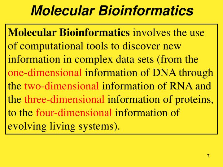 Molecular Bioinformatics