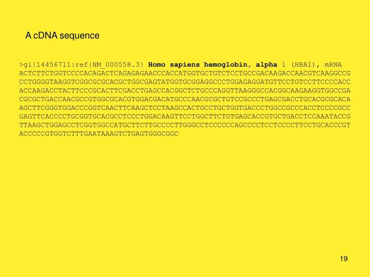 A cDNA sequence