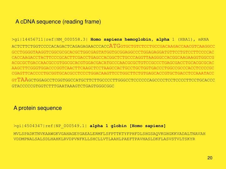 A cDNA sequence (reading frame)