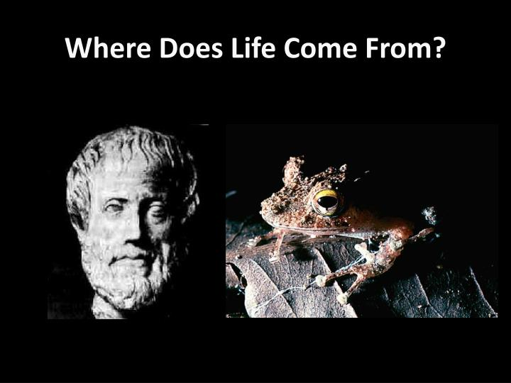 Where Does Life Come From?