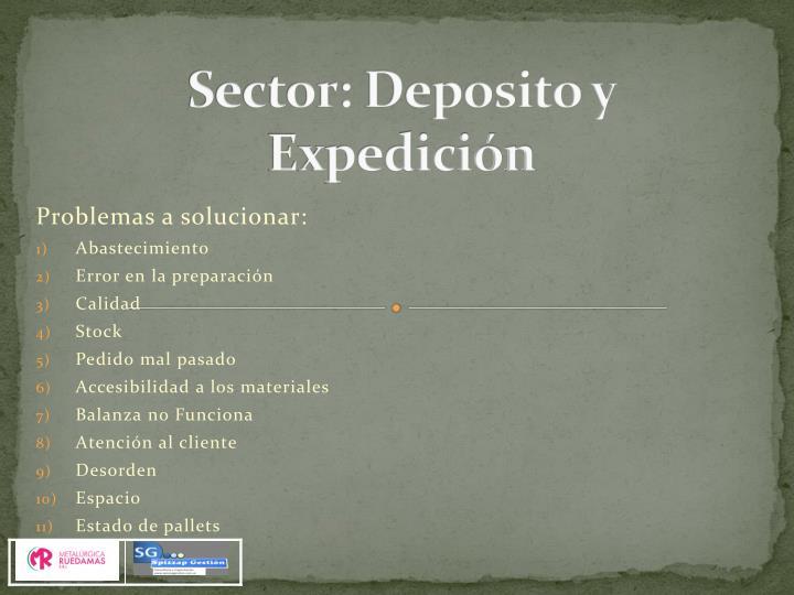 Sector: Deposito y Expedición