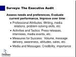 surveys the executive audit1