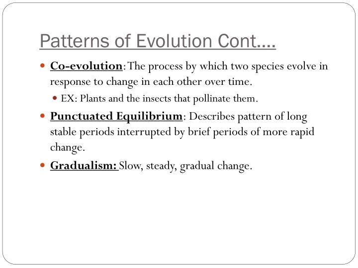 Patterns of Evolution Cont….