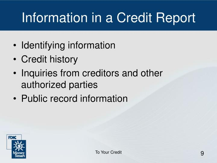 Information in a Credit Report