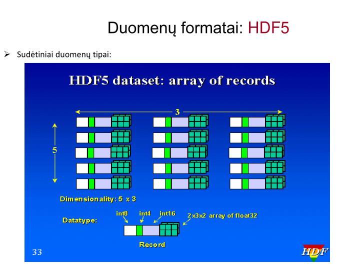 Duomenų formatai: