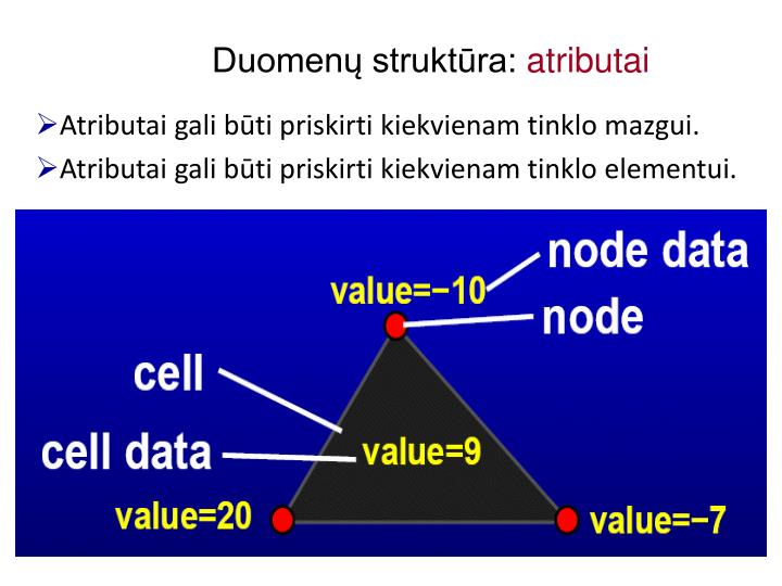 Duomenų struktūra: