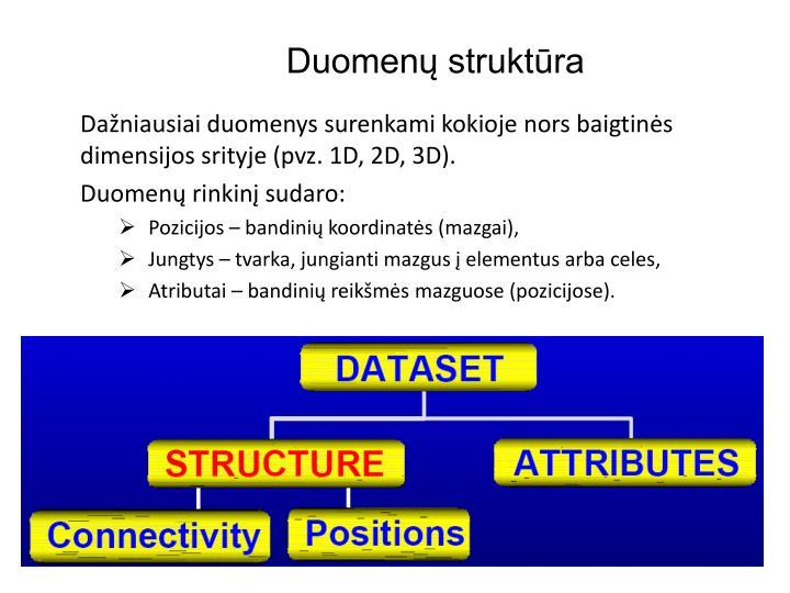 Duomenų struktūra