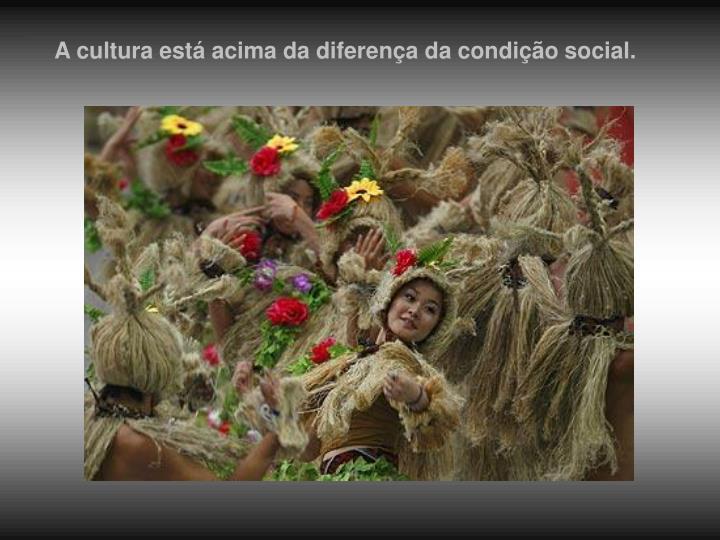 A cultura está acima da diferença da condição social.