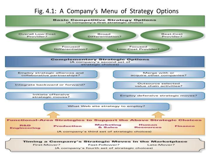 Fig. 4.1:  A  Company's  Menu  of  Strategy  Options