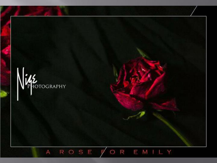 "a rose for emily themes essay Examples of william faulkner essay topics there is no theme of death in the a rose for emily by william faulkner why is william faulkner's ""a rose for."