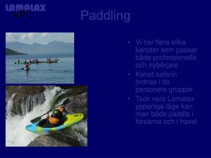 Vi har flera olika kanoter som passar både professionella och nybörjare