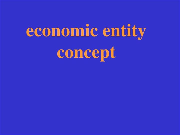 economic entity concept