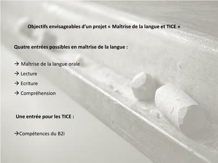 Objectifs envisageables d'un projet «Maîtrise de la langue et TICE»